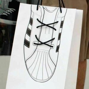 Desinger Shoes Carry Bag
