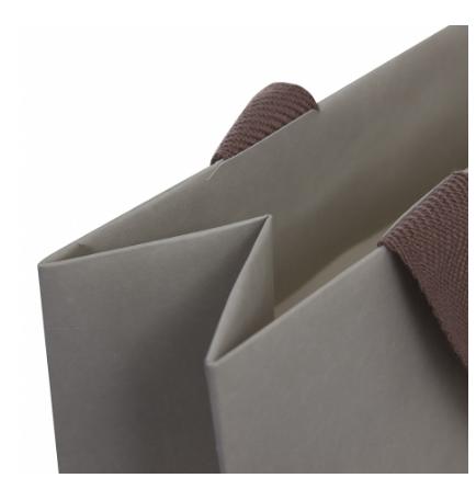 Luxury Long Ribbon Carry Bag
