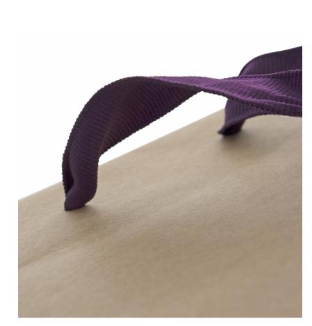 Luxury Printed Kraft Paper Carry Bag