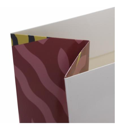 Printed Gloss Lamination Carry Bag