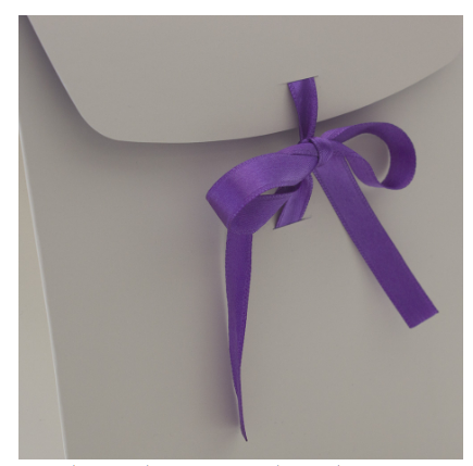 Ribbon Tied Jewellery Bag